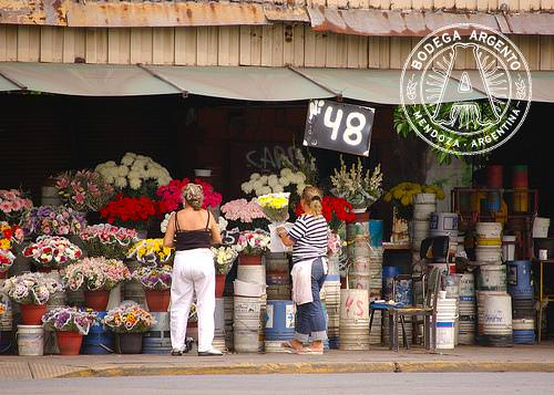 Buenos Aires Barrio - Chacarita Flower Stalls