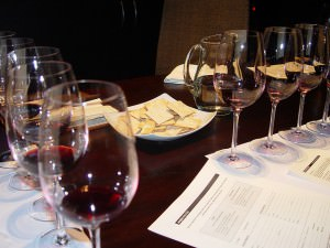Argentina Wine: Tasting at Vines of Mendoza