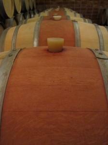 Pinot Noir Maturing