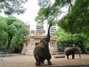 Palermo Zoo