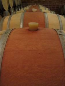 Fine wine maturing in a Mendoza cellar