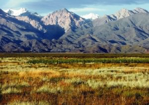 Mendoza: vines and mountains