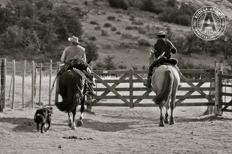 Gauchos – Photograph by Alex E. Proimos