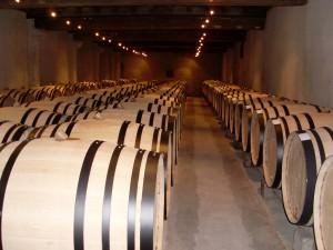 Chardonnay Barrels