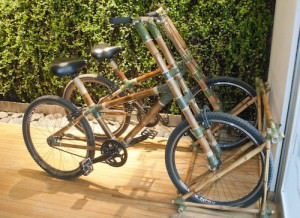 Bamboo Bicycles at Casa Calma