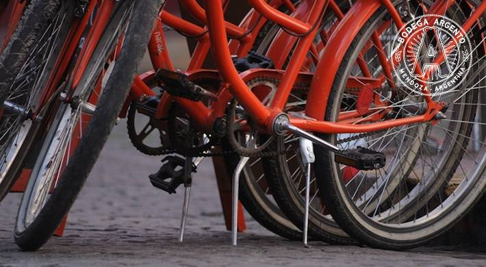 Get on Your Bikes - Cycling in Buenos Aires