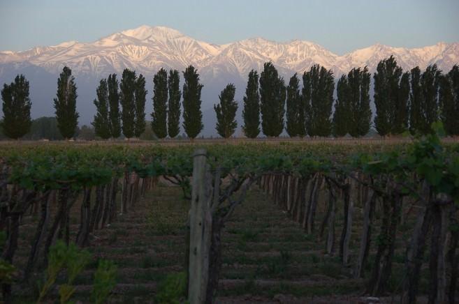 Sunrise in Mendoza