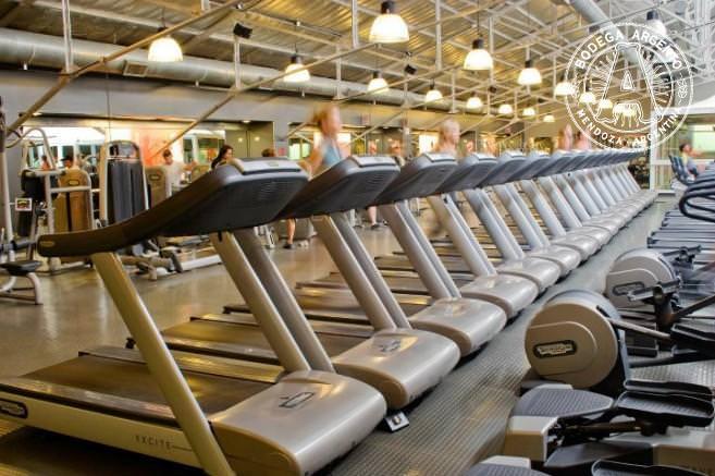 Treadmills at Megatlon; photo courtesy of Megatlon
