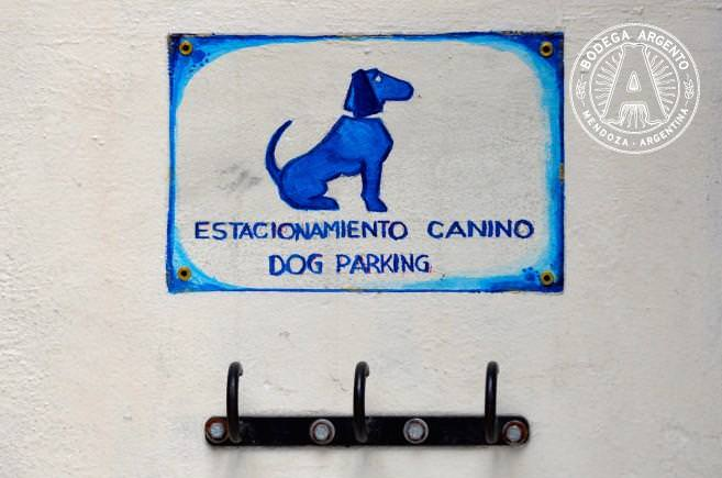 Dog Parks In Buenos Aires