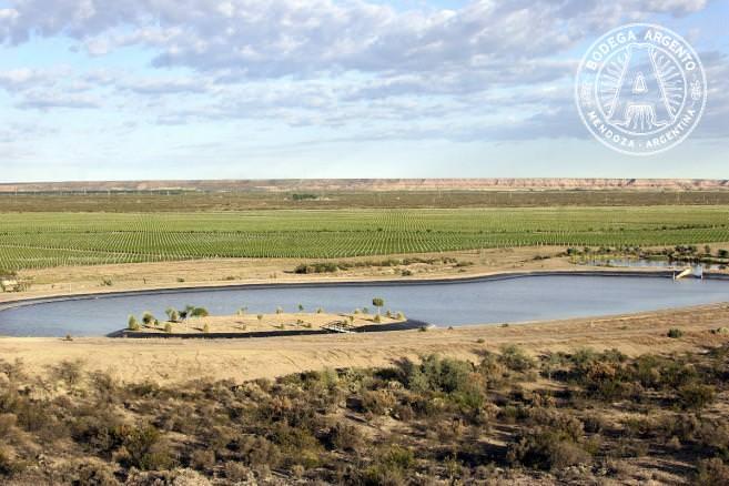 Del Desierto in La Pampa